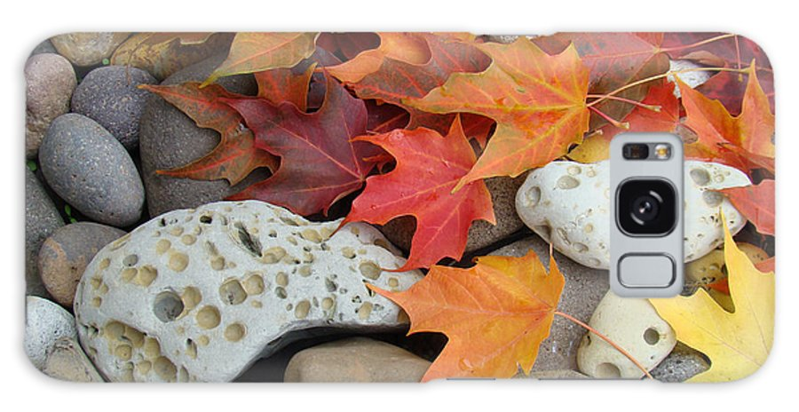 Art Galaxy S8 Case featuring the photograph Sweet Autumn 1 Autumn Leaves Rock Designs Photography Digital Art Prints by Baslee Troutman
