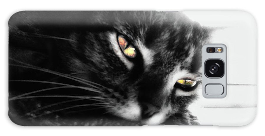Cat Galaxy S8 Case featuring the digital art Tabby Cat Selective Color by Frances Lewis