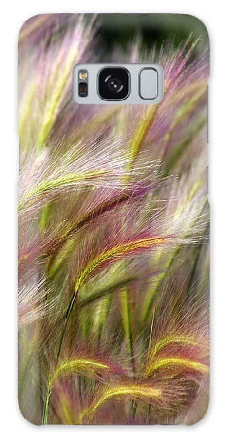 Plants Galaxy S8 Case featuring the photograph Tall Grass by Marty Koch