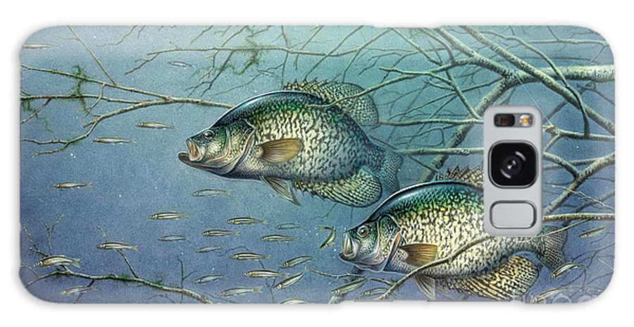 Jon Q Wright Galaxy Case featuring the painting Tangled Cover Crappie II by JQ Licensing