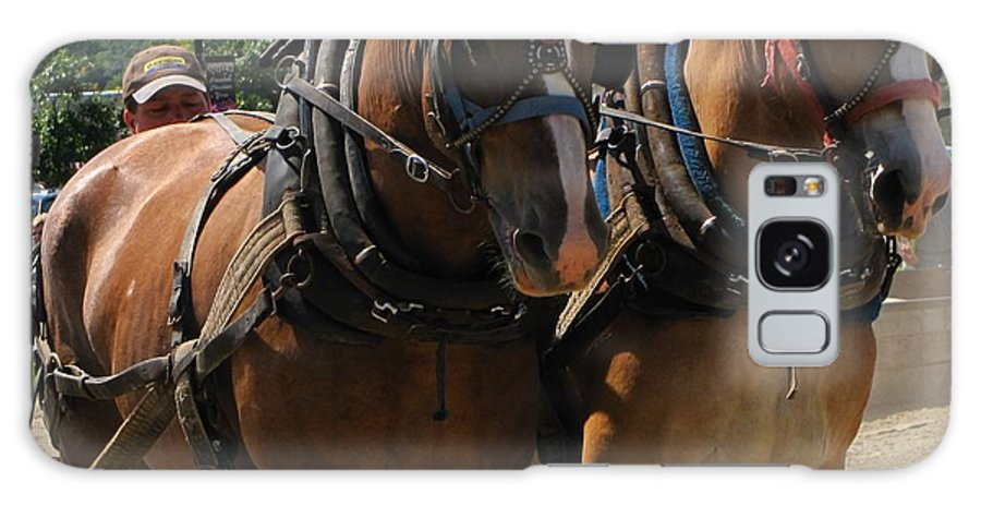 Horse Galaxy S8 Case featuring the photograph Team Work In Canada by Melissa Parks