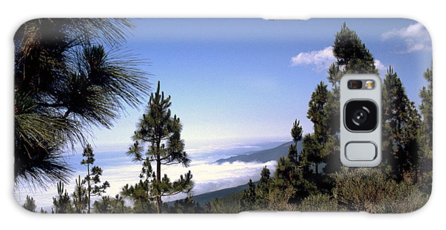 Tenerife Galaxy S8 Case featuring the photograph Tenerife by Flavia Westerwelle