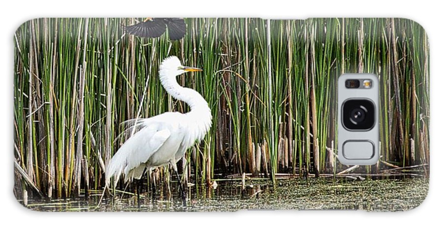 Egret Galaxy S8 Case featuring the photograph Territorial Dispute by John Prickett