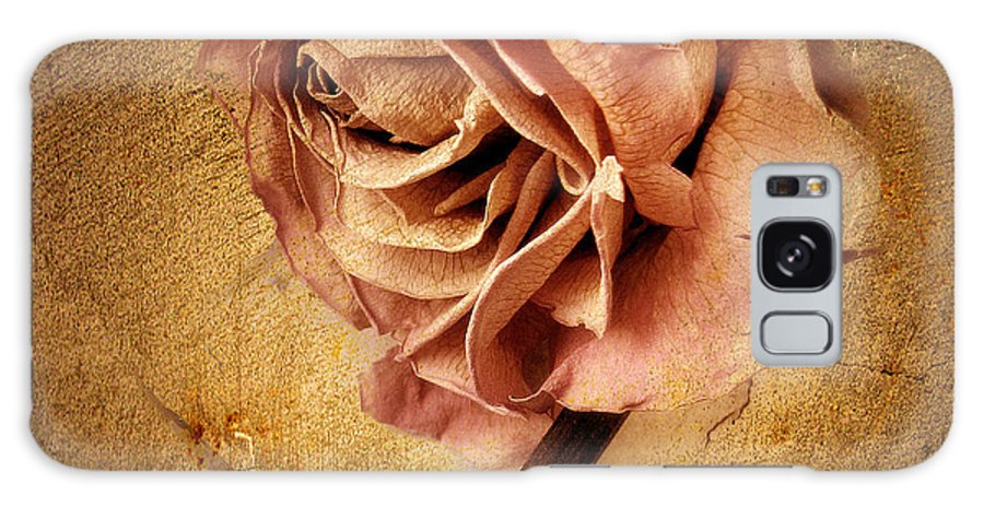 Flower Galaxy S8 Case featuring the photograph Textured Rose by Jessica Jenney
