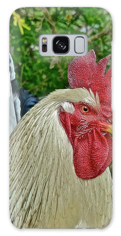 Roosters Galaxy S8 Case featuring the photograph The Boss by Diana Hatcher