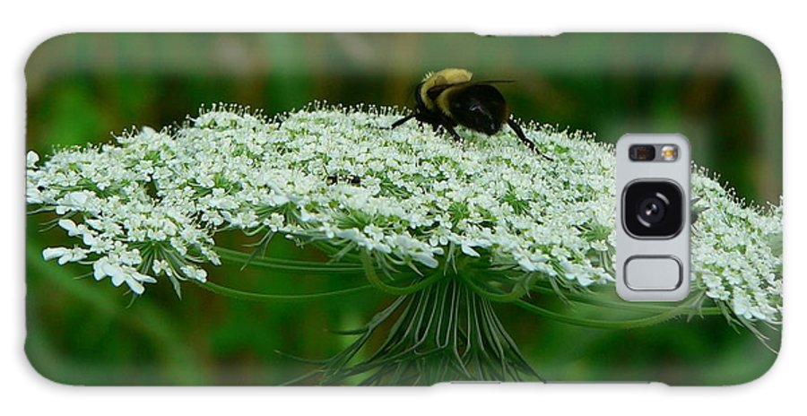 Bumblebee Galaxy Case featuring the photograph The Bumblebee And The Fly by RiaL Treasures