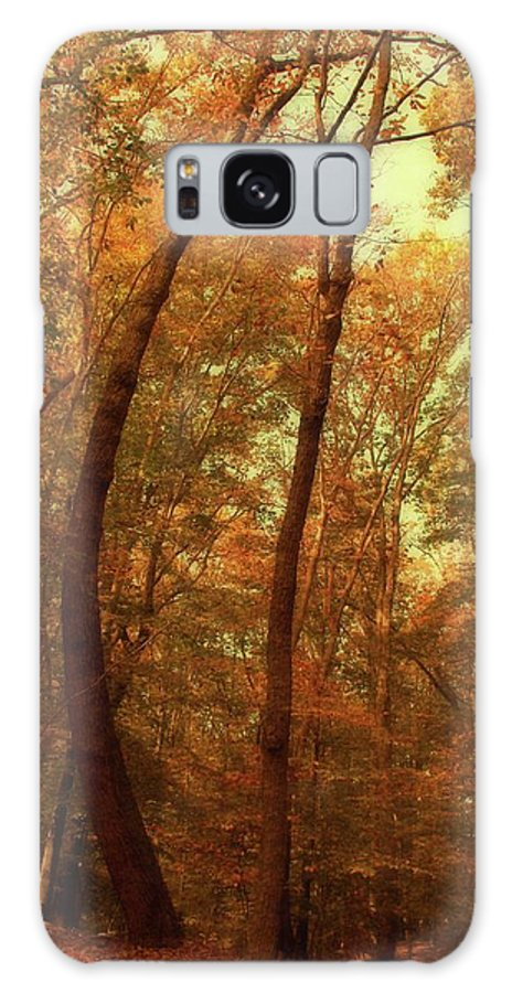 Autumn Galaxy S8 Case featuring the photograph The Curved Tree In The Woods by Angie Tirado