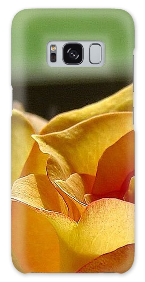 Rose Yellow Galaxy Case featuring the photograph The Edge Of Yellow by Luciana Seymour