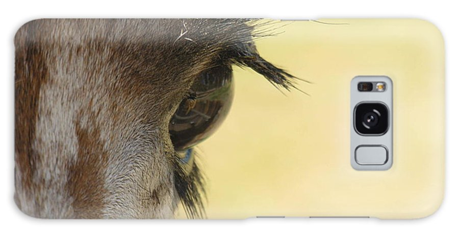 Giraffe Galaxy S8 Case featuring the photograph The Eyes Have It by Diane Greco-Lesser