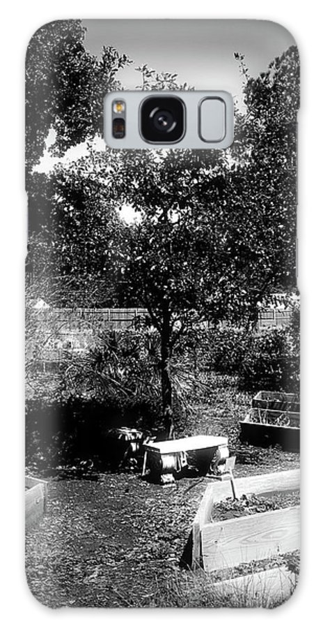 Dark Photos Galaxy S8 Case featuring the photograph The Garden by Jennifer DeMoss