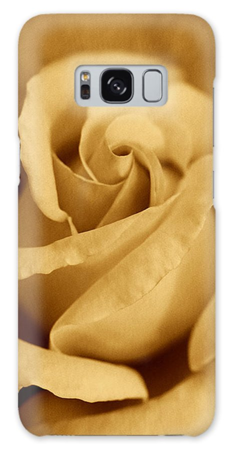 Rose Galaxy S8 Case featuring the photograph The Golden Vintage Rose by Jennie Marie Schell