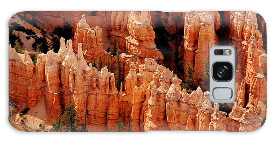 Landmark Galaxy S8 Case featuring the photograph The Hoodoos In Bryce Canyon by Susanne Van Hulst