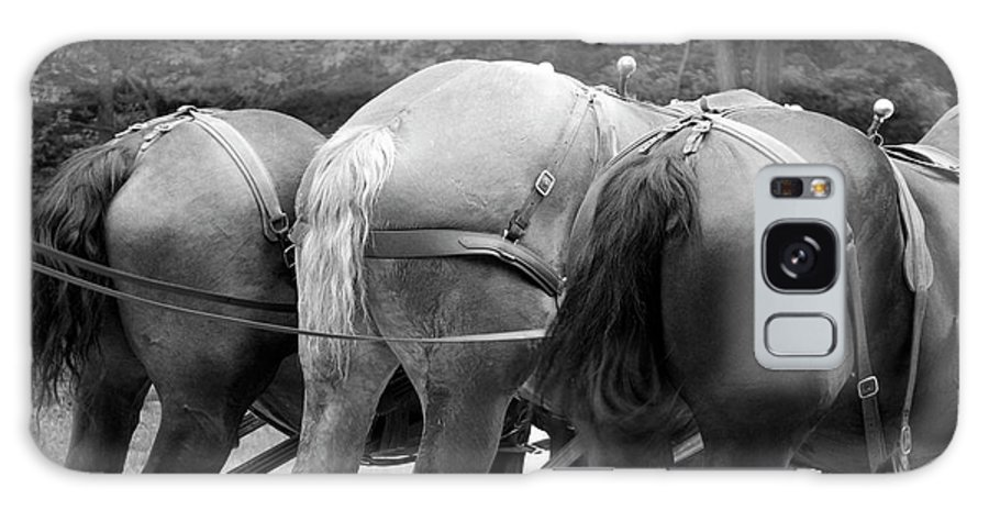 Mackinac Galaxy S8 Case featuring the photograph The Horses Of Mackinac Island Michigan 03 Bw by Thomas Woolworth