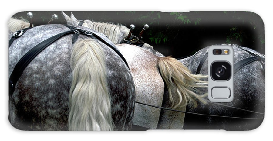 Mackinac Galaxy S8 Case featuring the photograph The Horses Of Mackinac Island Michigan 04 by Thomas Woolworth
