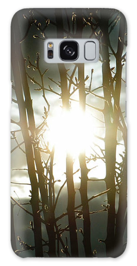 Sun Galaxy S8 Case featuring the photograph The In Between by September Stone