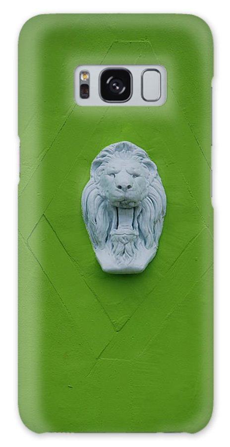 Lion Galaxy S8 Case featuring the photograph The Lion by Rob Hans