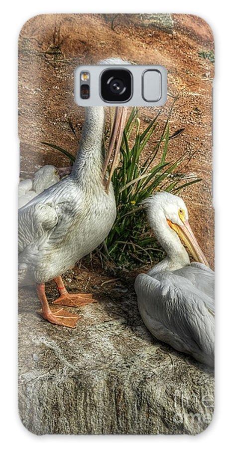 White Pelicans Galaxy S8 Case featuring the photograph The Pelicans by Saija Lehtonen