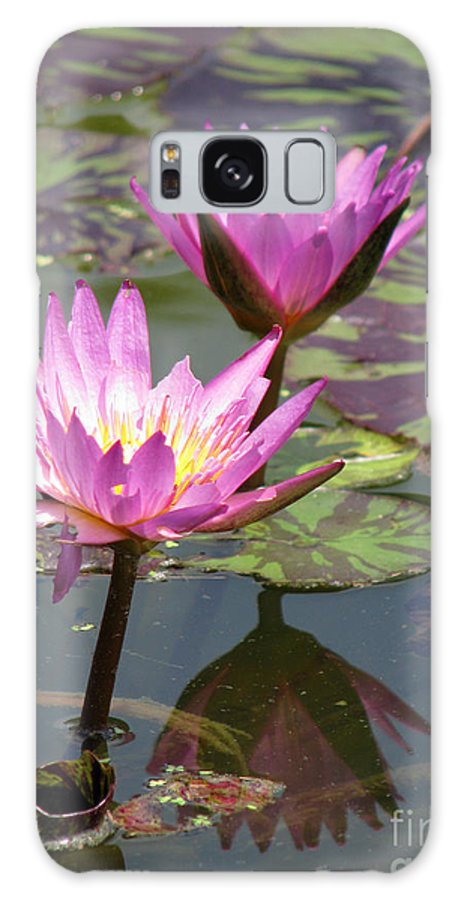 Lillypad Galaxy S8 Case featuring the photograph The Pond by Amanda Barcon