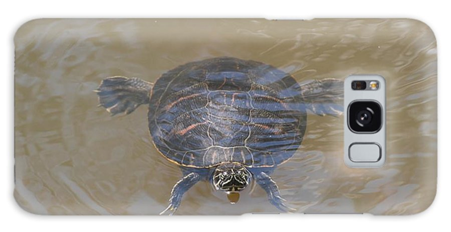Water Galaxy S8 Case featuring the photograph The Swimming Turtle by Rob Hans