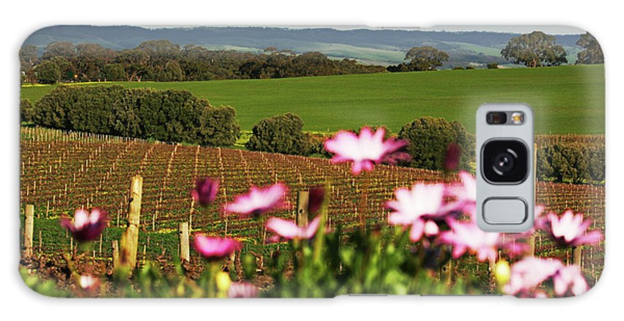 Vineyard Galaxy S8 Case featuring the photograph The View Behind by Douglas Barnard