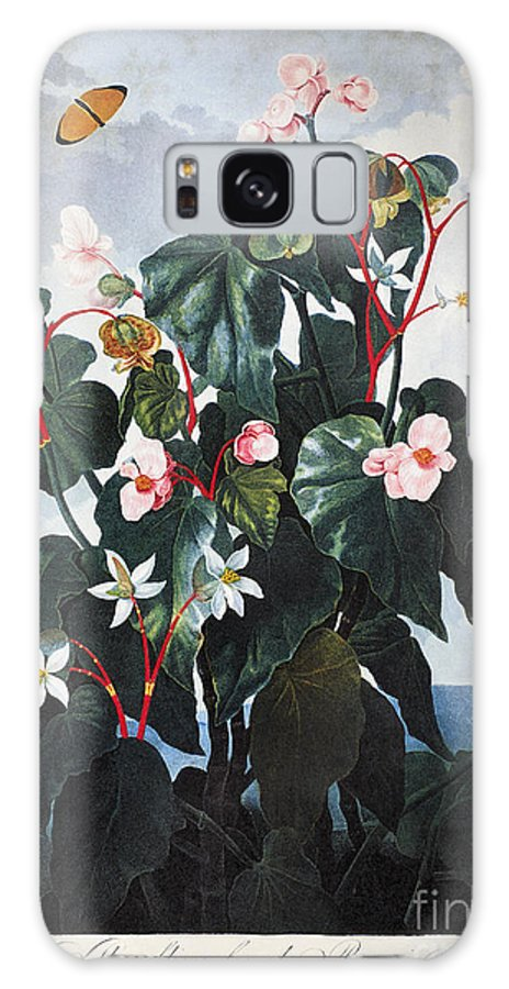 1800 Galaxy S8 Case featuring the photograph Thornton: Begonia by Granger