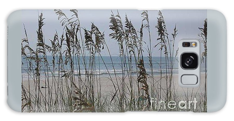 Florida Beach Near St. Augustine Galaxy S8 Case featuring the photograph Thru The Sea Oats by Barb Montanye Meseroll