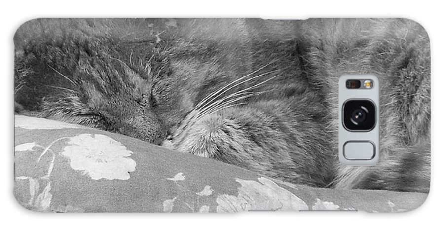 Cat Galaxy S8 Case featuring the photograph Thumbody Sleeping by Deborah Montana