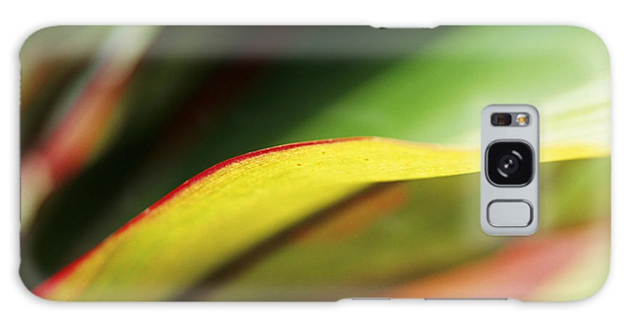Abstract Galaxy S8 Case featuring the photograph Ti-leaf Abstract by William Waterfall - Printscapes