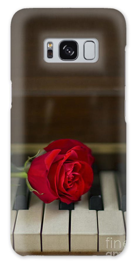 Alone Galaxy Case featuring the photograph Timeless Melody by Evelina Kremsdorf