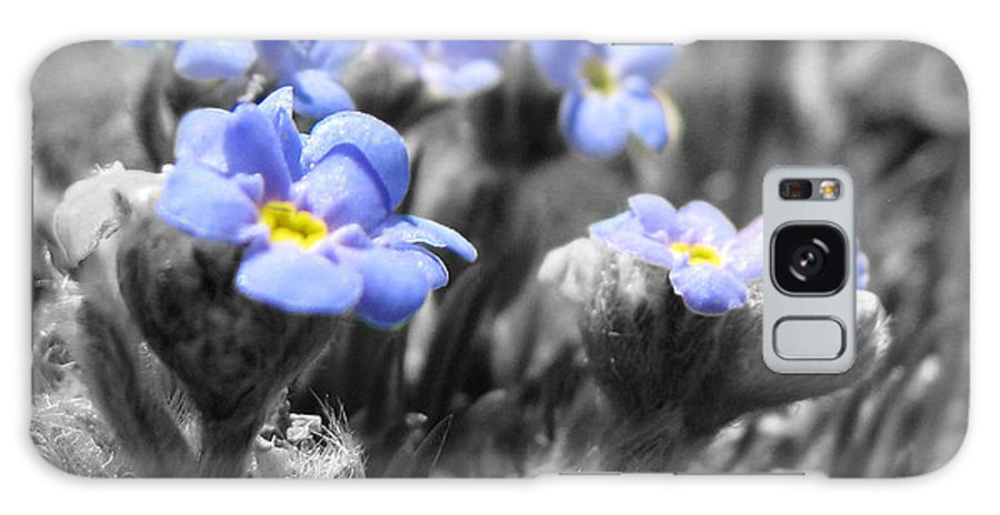 Flowers Galaxy Case featuring the photograph Tiny Gems by Amanda Barcon