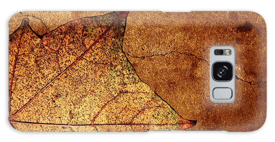 Autumn Galaxy Case featuring the photograph Today Everything Changes by Dana DiPasquale