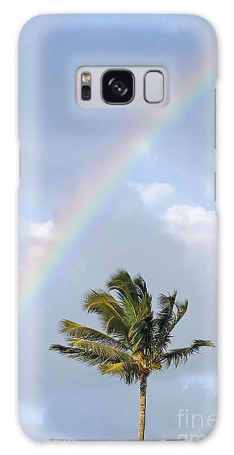 Afternoon Galaxy S8 Case featuring the photograph Top Of A Palm Tree by Ron Dahlquist - Printscapes