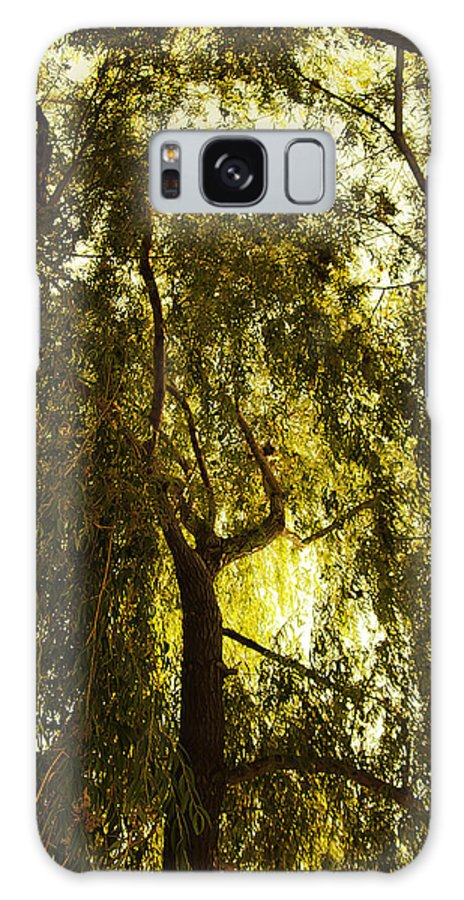 Art Galaxy S8 Case featuring the photograph Top View by Svetlana Sewell