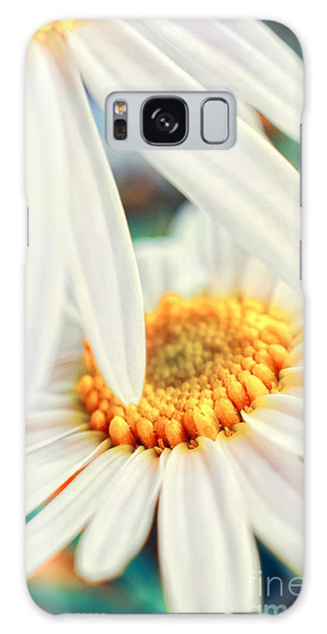 Flowers Galaxy S8 Case featuring the photograph Touch by Silvia Ganora
