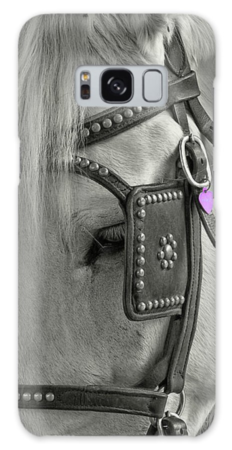 Blinders Galaxy S8 Case featuring the photograph Tour Savannah by Dressage Design