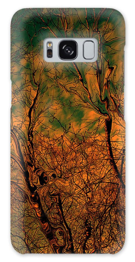 Trees Galaxy S8 Case featuring the photograph Tree Abstract by Linda Sannuti