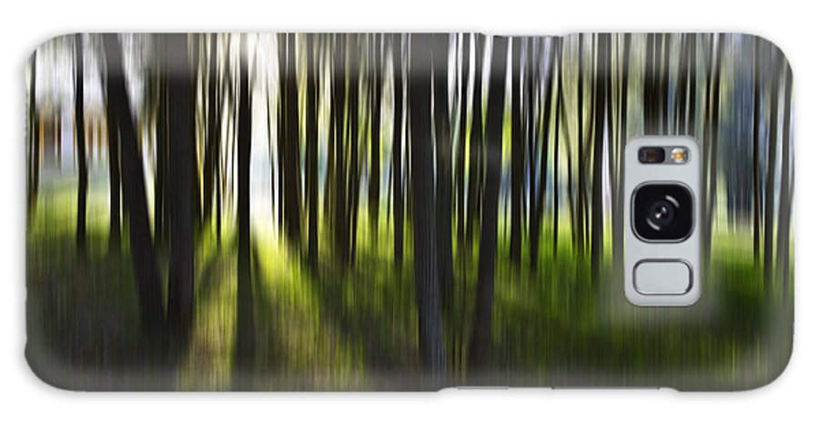 Trees Abstract Tree Lines Forest Wood Galaxy S8 Case featuring the photograph Tree Abstract by Sheila Smart Fine Art Photography