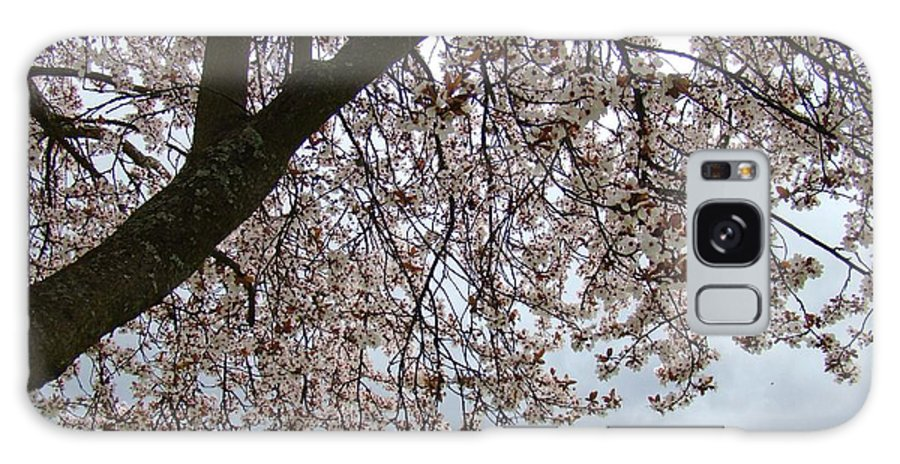 �blossoms Artwork� Galaxy Case featuring the photograph Tree Blossoms Landscape 11 Spring Blossoms Art Prints Giclee Sky Storm Clouds by Baslee Troutman