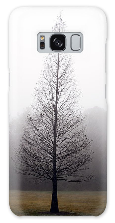 Scenic Galaxy S8 Case featuring the photograph Tree In Fog by Ayesha Lakes