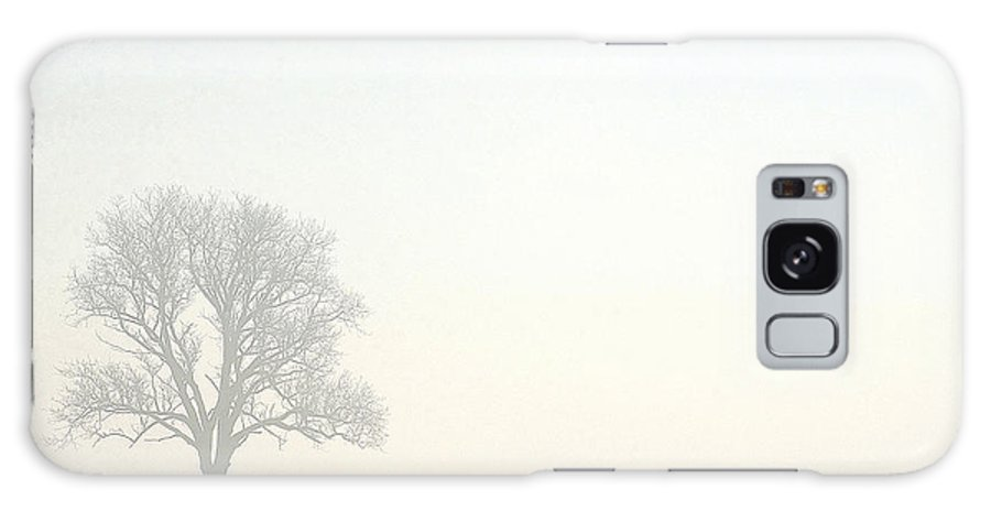 Tree Galaxy S8 Case featuring the photograph Tree In Morning Fog by Steve Somerville