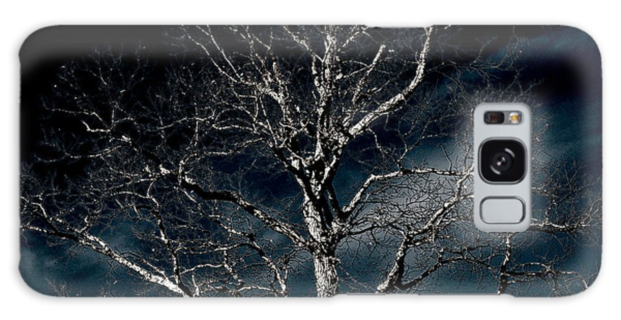 Tree Galaxy S8 Case featuring the photograph Tree Of Solitude by Shawn Wood