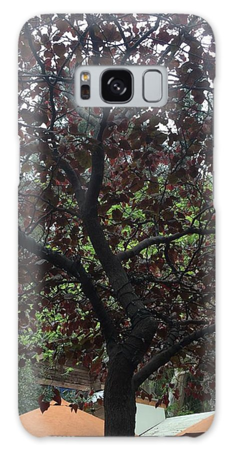 Tree Color Landscape Art Texture Shadow Galaxy S8 Case featuring the photograph Tree by Russell Keating