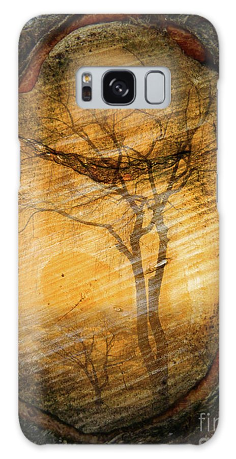 Trees Galaxy S8 Case featuring the photograph Tree Within A Tree by Tara Turner