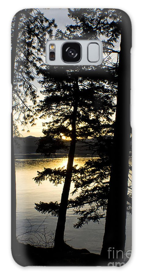 Trees Galaxy S8 Case featuring the photograph Trees By The Lake by Idaho Scenic Images Linda Lantzy