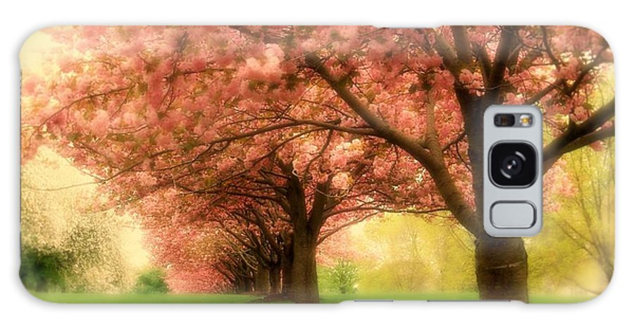Cherry Blossom Trees Galaxy S8 Case featuring the photograph Trees In A Row by Angie Tirado