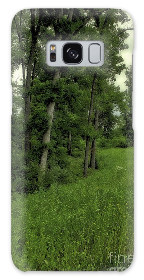 Tree Galaxy S8 Case featuring the photograph Trees by Madeline Ellis