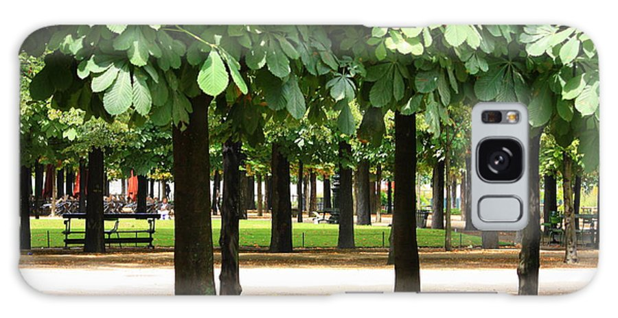 French Garden Galaxy S8 Case featuring the photograph Trees Of Tuilieres by Carol Groenen