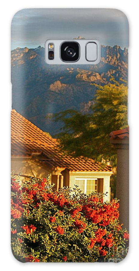 Mountains Galaxy S8 Case featuring the photograph Tucson Beauty by Nadine Rippelmeyer