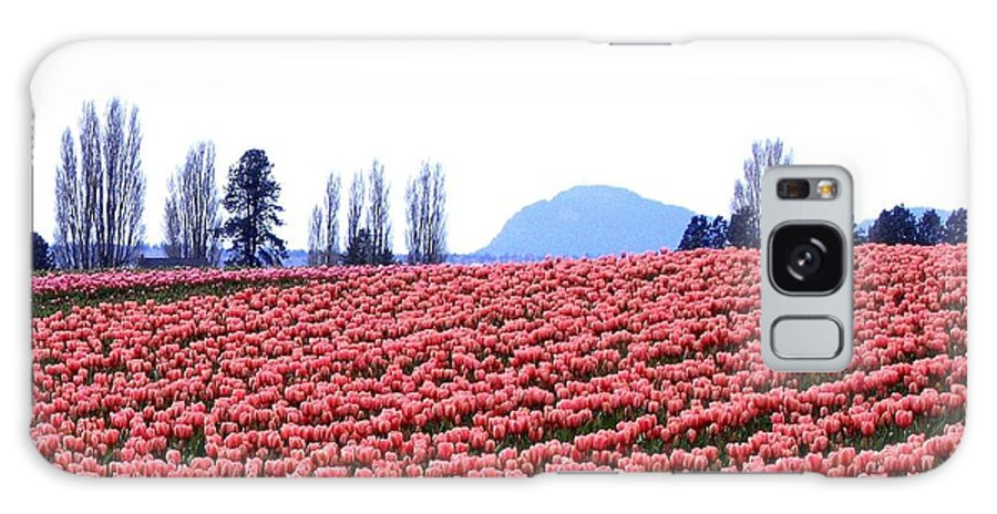 Agriculture Galaxy S8 Case featuring the photograph Tulip Town 3 by Will Borden