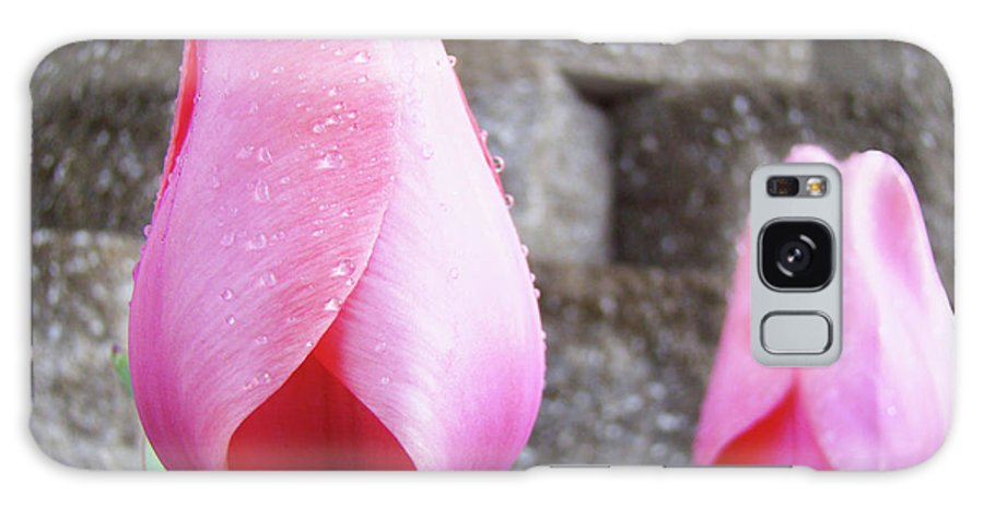 �tulips Artwork� Galaxy S8 Case featuring the photograph Tulips Artwork Flowers 26 Pink Tulip Flowers Art Prints Nature Floral Art by Baslee Troutman